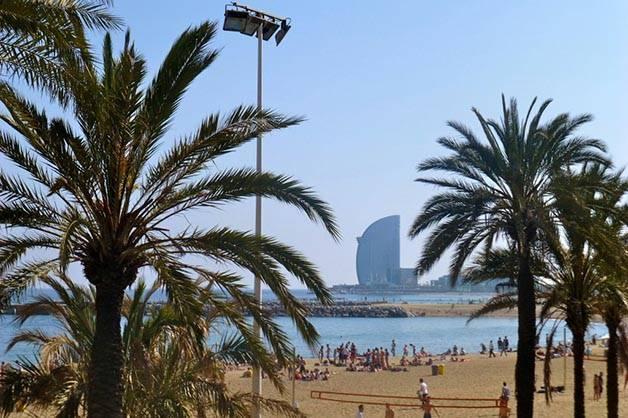 bord de mer avec palmiers et l'hôtel W à Barcelone