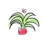 dessin plante.verte