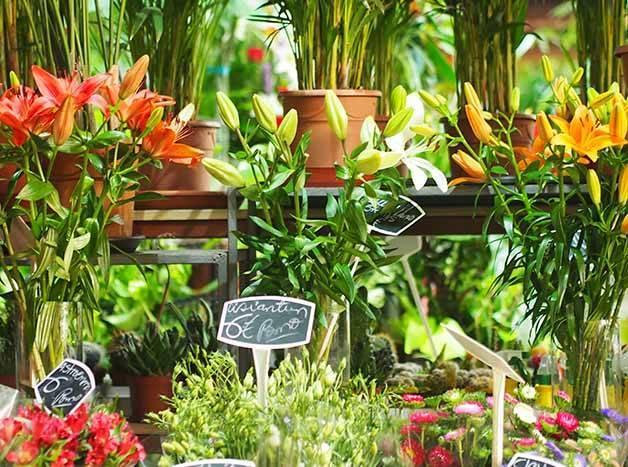 marché Barcelone mercat de la concepcio fleurs