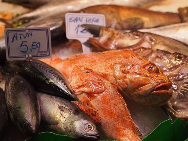 marchés Barcelone mercat santa caterina poissons