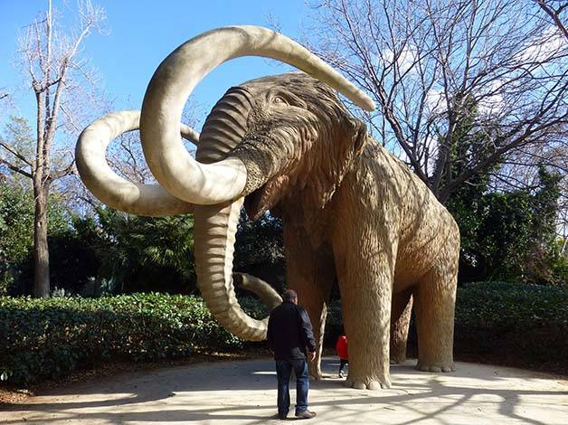 parc de la ciutadella mammouth