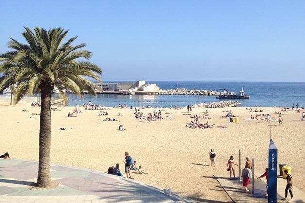 pique-nique à la plage de barcelone