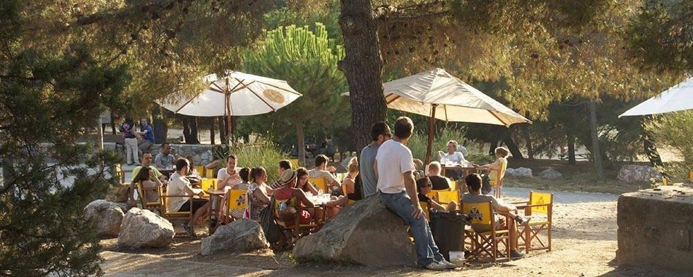 Terrasses ombragées à Barcelone: des endroits frais pour s'abriter de la chaleur