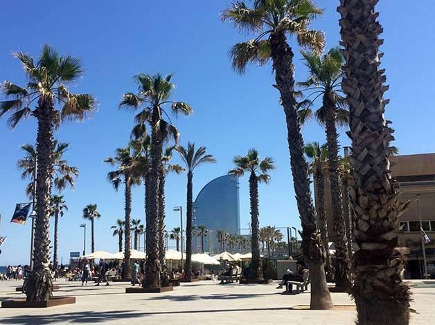 hotel W et palmiers à Barcelone