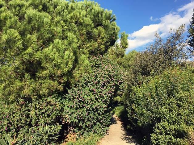 11-novembre parc verdure