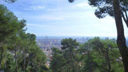 randonnée sportive panorama de barcelone à travers les arbres