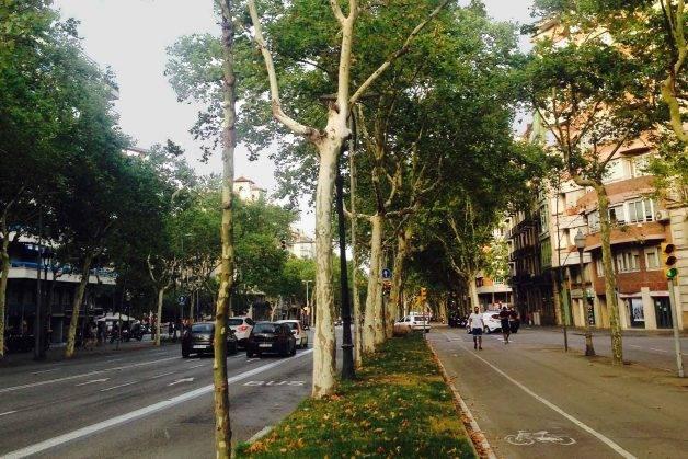 Diagonal courir à Barcelone