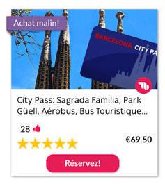 City Pass: Sagrada Familia, Park Güell, Aérobus, Bus Touristique…